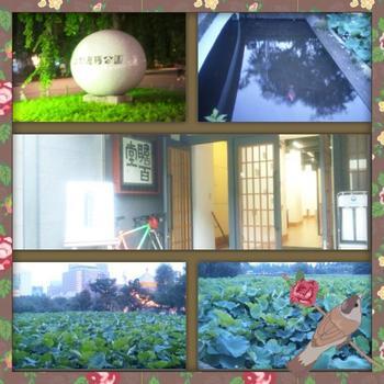 上野恩賜公園とギャラリー